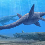 Plesiosaurus Facts