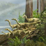Coelophysis Facts