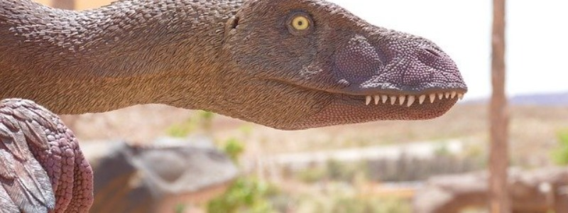 When Did the Velociraptor Become Extinct?