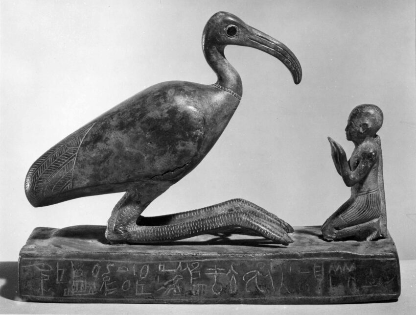 Thoth-ibis and devotee